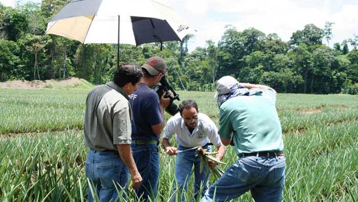 US program BIO RACIONAL goes to the field looking for new agricultural improvements.